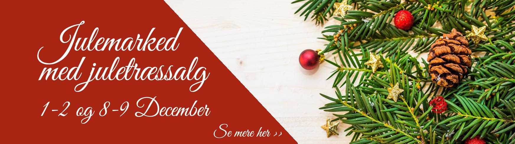 julemarked med juletræssalg i december