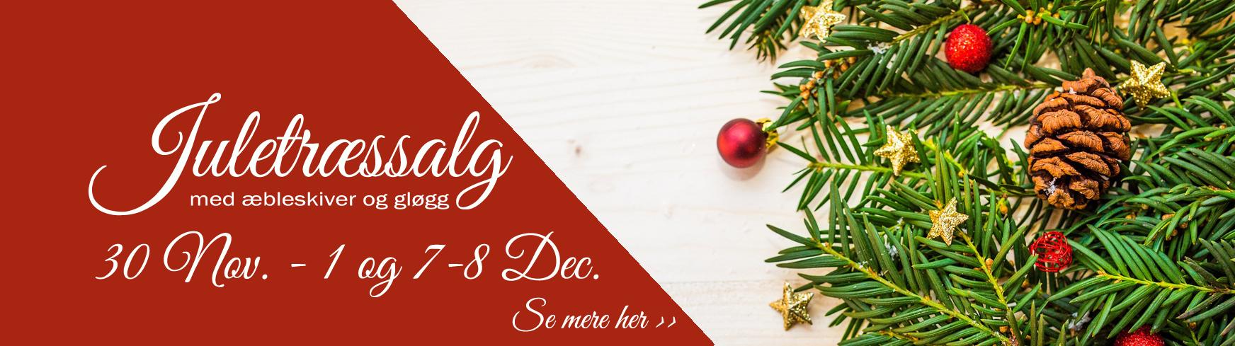 juletræssalg i aarøsund 1 november